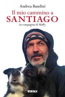 Immagine Il mio cammino a Santiago