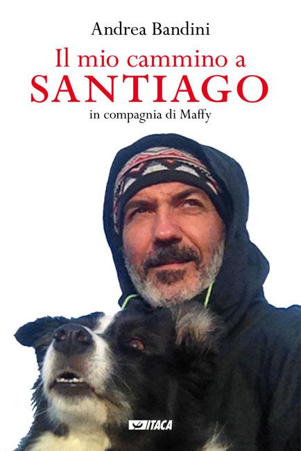 Il mio cammino a Santiago
